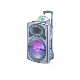 DAEWOO PARLANTE DISKO DW-D1002 LUCES-DISCO-COLORES