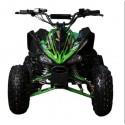 MINI ATV CUATRICICLO GRANDE LED 1000W